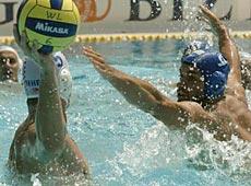 游泳-水球