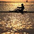 图文-12日赛艇赛况 点点金光洒湖面