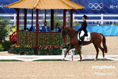 图文-奥运马术比赛香港揭幕 爱尔兰选手奥康纳