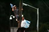 球迷爬上电线杆