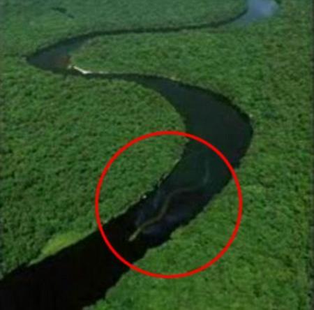 马来西亚河流现不明物疑似30米长巨蛇(图)