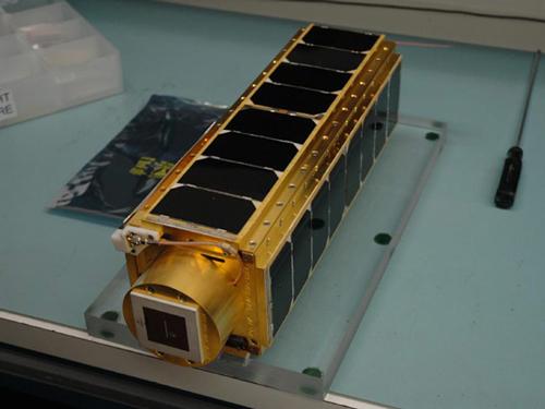 美拟用纳米卫星送地球生物上太空(图)