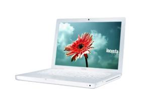 苹果 MacBook(MC516ZP/A)
