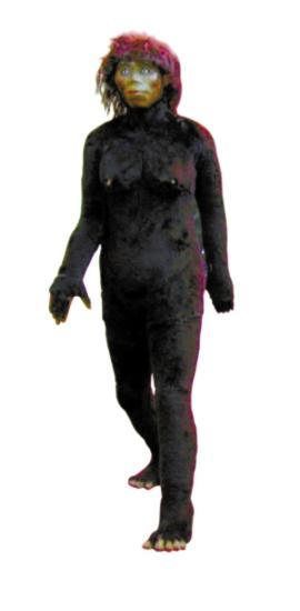 """神农架自然博物馆内的""""野人""""模型"""