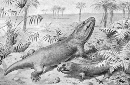 乳齿螈和喙头龙。乳齿螈是晚三叠纪生物灭绝前最大的陆地动物之一。喙头龙也是此次灭绝的一种爬行动物。