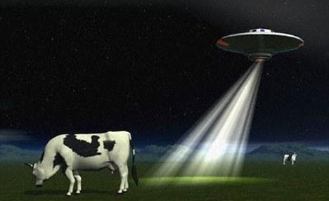 短短3天之内,参与实验的20名志愿者中便有7人在梦中看到外星人,例如小绿人或者7英尺(约合2.13米)的机器人