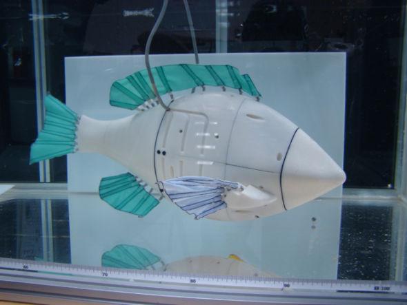 机器翻车鱼