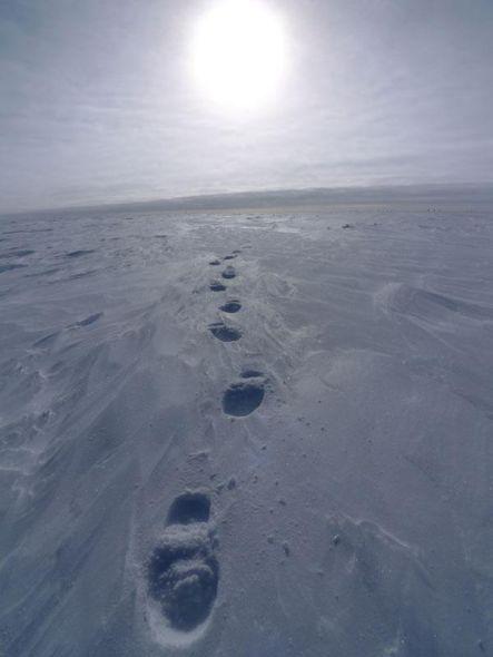 布莫让星云是宇宙中最冷之地,温度只有零下272摄氏度,只比绝对零度高1度
