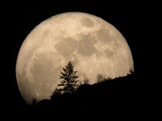 """本月23日晚,将会上演""""超级月亮""""天象"""