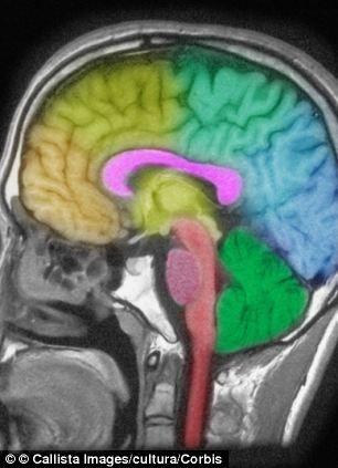 失眠对大脑造成的伤害类似于头部外伤产生的影响,它使大脑内和脑损伤有关的化学物质剧增。