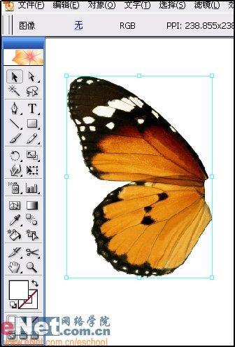 用Illustrator打造蝴蝶飞舞效果