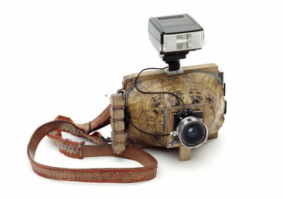 乌龟犰狳大画幅动物标本照相机诞生