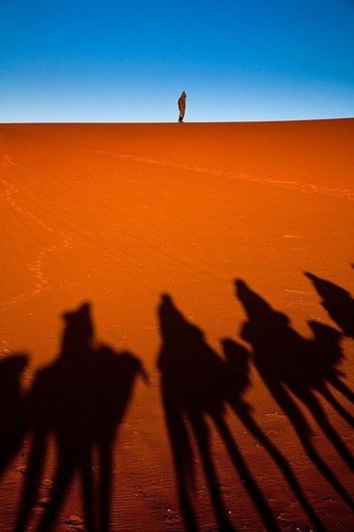 一望无际的黄沙 世界沙漠摄影作品欣赏