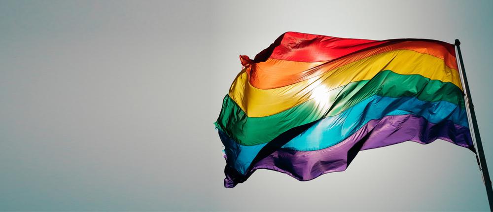 彩虹共和国的罪与罚