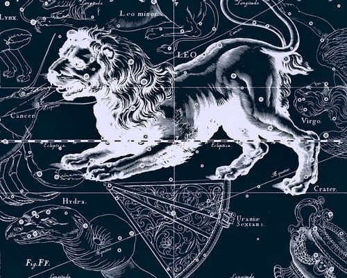 狮子座(图片来源于网络)