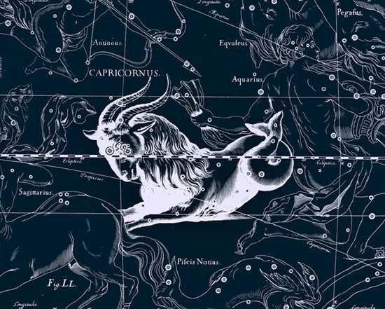 魔羯座星图(图片来源于网络)