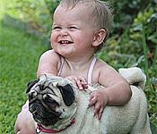 嗨皮的宝宝和狗狗