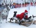 雪运动项目
