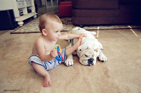 母亲镜头下女儿与斗牛犬的友情