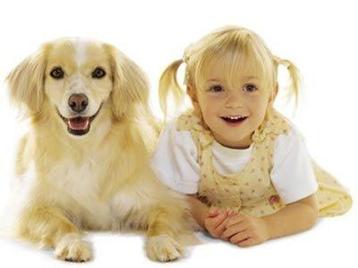 哮喘患儿应远离地毯和宠物