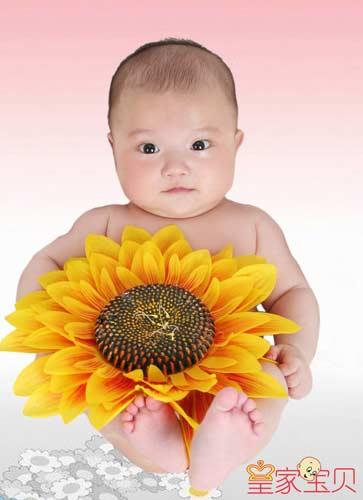 动感宝贝·我型我秀第66期:向日葵(图)