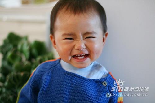 新浪宝宝笑脸14:可爱的宝宝(图)