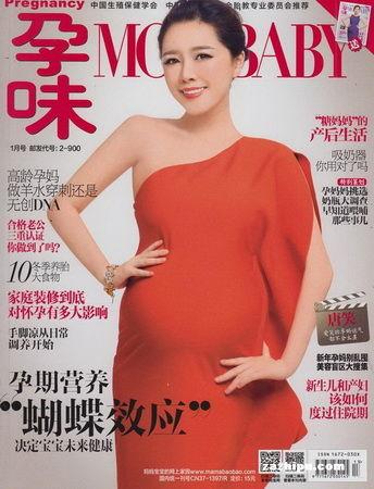 《孕味》2014年1-3月刊封面(图)