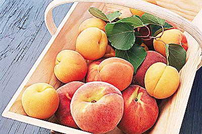 鲜桃并非人人都能吃(图)