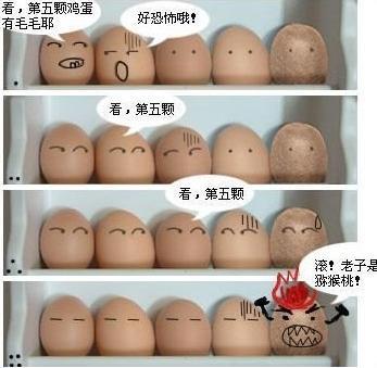 坐月子的营养佳品--鸡蛋(图)