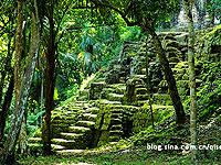 玛雅丛林中的惊奇发现