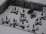 今年冬天的雪有点早