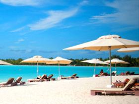 在岸边的白色沙滩谈情说爱