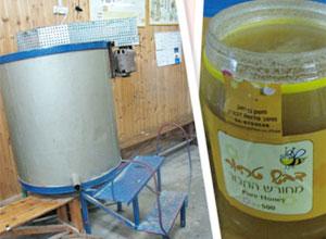下加利利的蜂蜜园Dvorat Hatavor