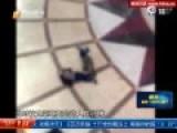 广州黑桃A通缉犯逃亡17年后跳楼砸死路人