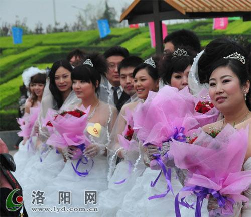 幸福姻缘云中漫步――2010洛阳牡丹婚典隆重举行