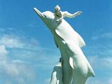 厦门中华白海豚保护区