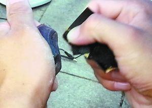 牙膏抛光是琥珀成为饰品前的最后一次抛光工序。