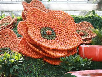 农业嘉年华里的南瓜秀