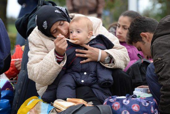 德国接受80万难民只为解决就业?