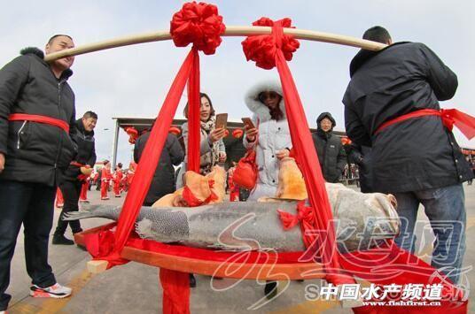 东口码头庆典活动吸引了游客 YMG记者 唐克 摄