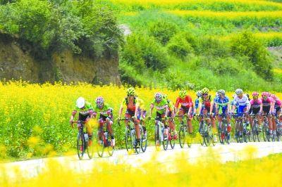 """第十五届""""青海农信杯""""环青海湖国际公路自行车赛"""