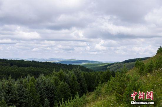 图为攻坚造林新区域与先前林场。