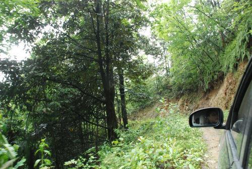 鹤峰县位于湖北西南边陲,恩施土家族苗族自治州东南部的大山之中.