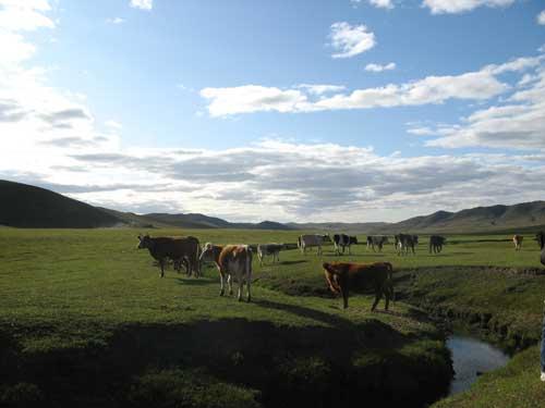 赤峰精彩图集:美丽的草原我的家(组图)