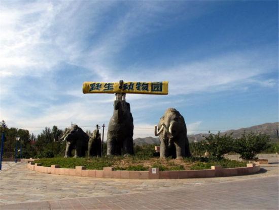 呼和浩特大青山野生动物园于2006年10月1日开园,并由呼市动物园管理