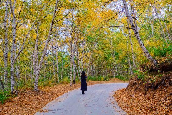 秋意味浓・多彩密云邀您一起赏美景品美食