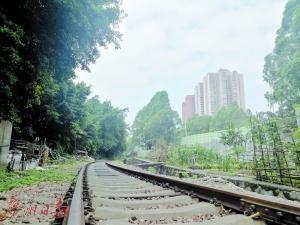 广州研究废旧铁路更新改造 何处老铁路将变新公园