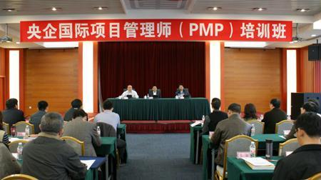 2010年中央企业国际化人才国际项目管理师(P