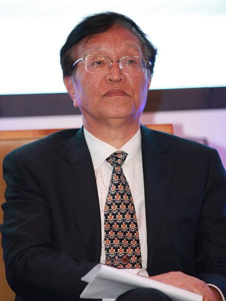"""""""三亚・财经国际论坛""""于2012年12月15日-17日在海南省三亚市召开举行。上图为国家能源委员会专家咨询委员会主任张国宝。(图片来源:新浪财经 梁斌 摄)"""