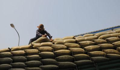 因粮库和用粮企业的暧昧关系,致使托市粮拍卖价格低于同期市场价格,国家财政用于粮库补贴的损失巨大。